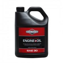 Olej motorový BRIGGS SAE 30 5 L
