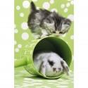 Schmidt Puzzle Koťátko a králíček 150 dílků