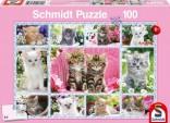 Schmidt Puzzle Koťátka 100 dílků