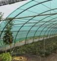 Síťovina stínící PE zelená 100 g  1,5 x 3,2 m