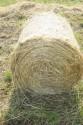 Síťovina PE bílá 60 cm 1,4 km
